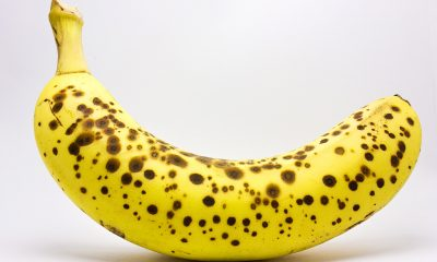 spotted_banana_in_a_lightbox